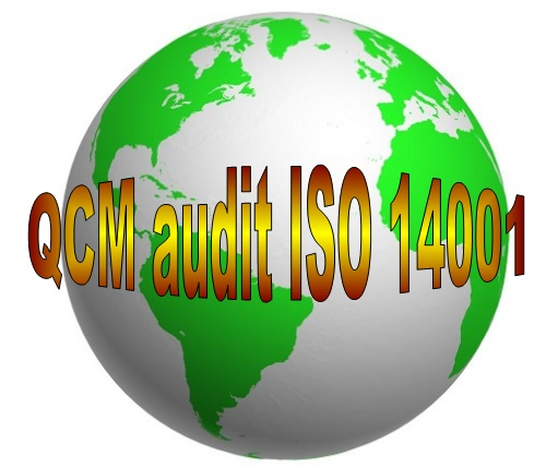E 37 QCM formation audit interne ISO 14001